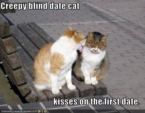 creepy blind date cat kisses